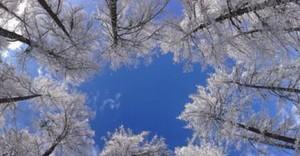 MPM hiver